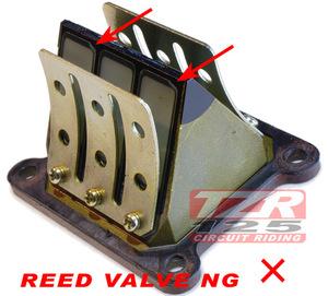 Ng_reed_valve_101224_h48