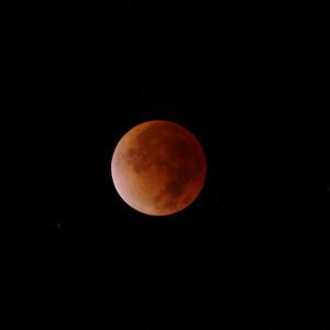 Luner_eclips_1_20111211_w60_2