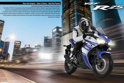 Yamaha_r25bl